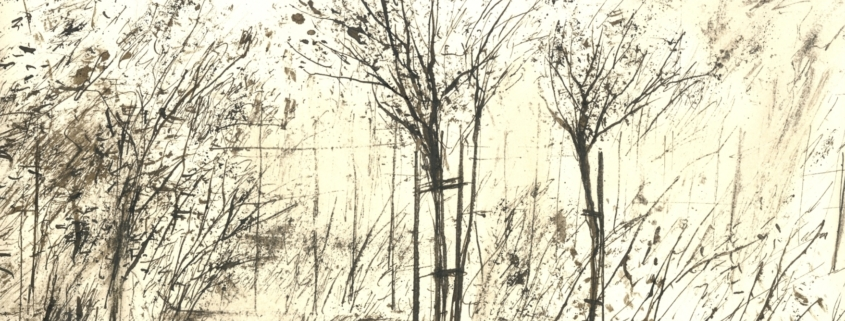Claudia Berg: Rosengarten